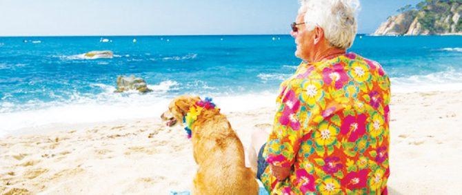 5 benefícios da convivência com animais para idosos