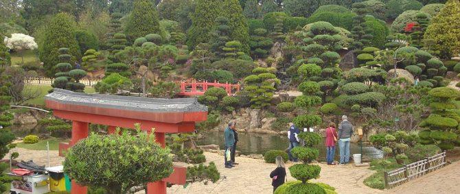 Confira fotos da viagem feita para Maeda